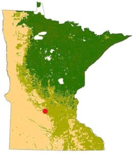 diagram of the Minnesota with a red dot marking the location of Darwin, showing prairie on the west and south and forests to the north