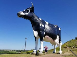 photo of a very large cow statue with Violet standing next to it, only as tall as its knee